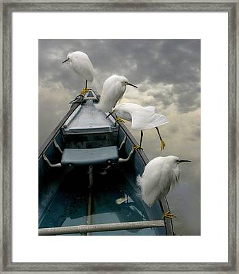 Birds Boat And Beyond Framed Print by Henry Murray