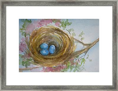 Birds Eggs In A Nest Framed Print by Gloria Turner