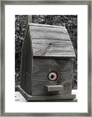 Birds Eye View Framed Print by Kristie  Bonnewell