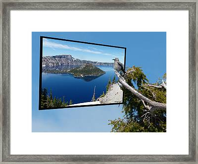 Birds Eye View Of Crater Lake Framed Print by Cindy Wright