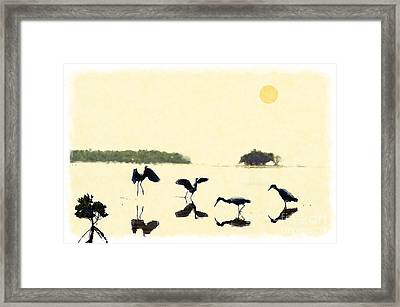 Framed Print featuring the photograph birds feeding in the Everglades by Dan Friend