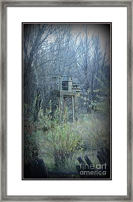 Bird's Haven In The Fall Framed Print