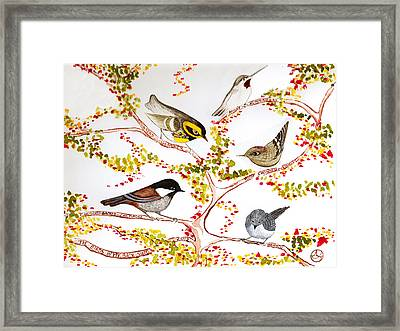Birds In My Backyard Framed Print by Alexandra  Sanders