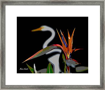 Birds In My Paradise... Framed Print
