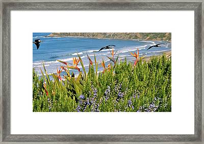 Framed Print featuring the photograph Birds In Paradise by Johanne Peale