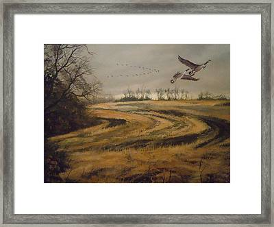 Birds In The Autumn Framed Print by James Guentner