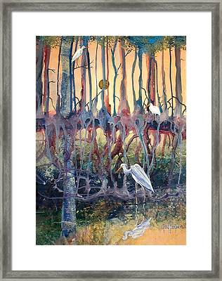 Birds Of The Water Framed Print