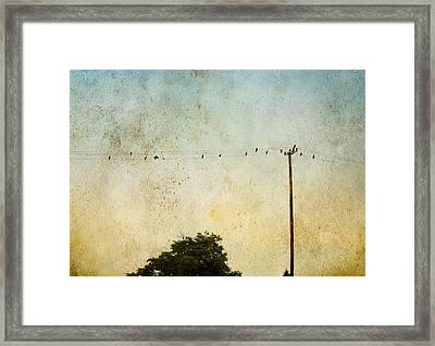 Birds On A Wire Framed Print by Karen Lynch