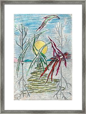 Birds Over Lake Framed Print by Yury Bashkin