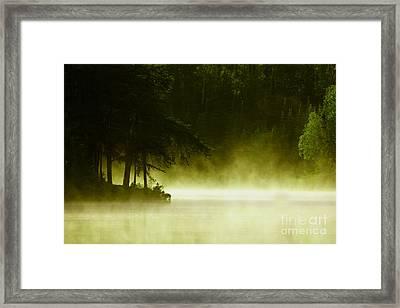 Biscotasing Framed Print