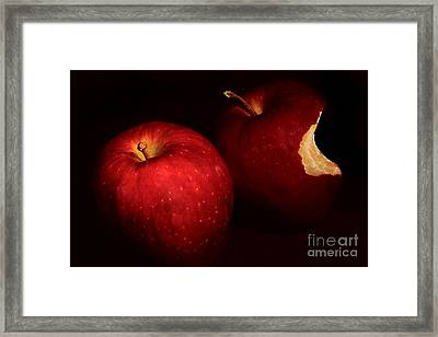 Bite Me Framed Print by David Taylor