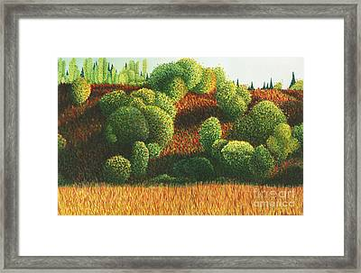 Bits Of Color In Driftwood Canyon Framed Print