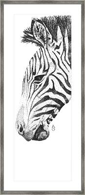 Black And White Framed Print by Anastasia Smith