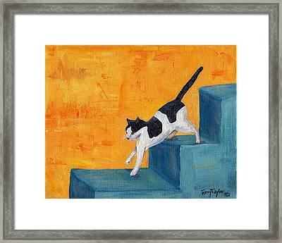 Black And White Cat Descending Blue Stairs Framed Print