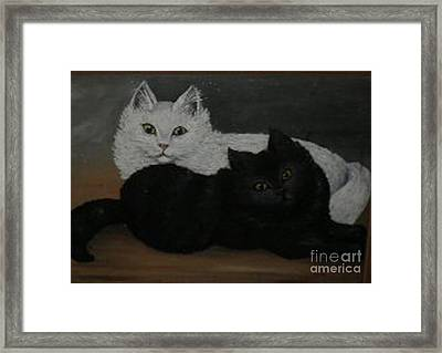 Black And White Cats Framed Print by Hilda Schreiber