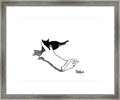 Black And White Cats Framed Print