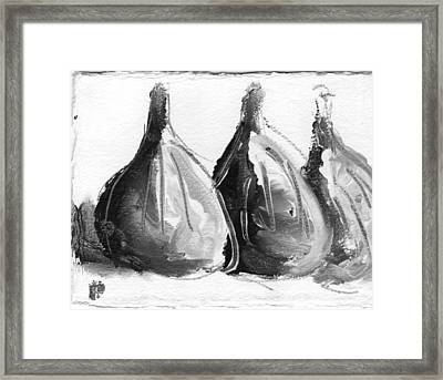 Black And White Fig Study Framed Print by Suzanne Jenne