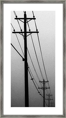 Black And White Poles In Fog Right View Framed Print by Tony Grider