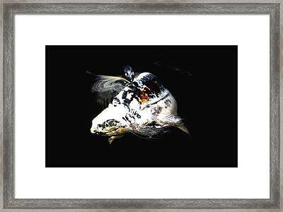 Black And White Streak Framed Print by Don Mann