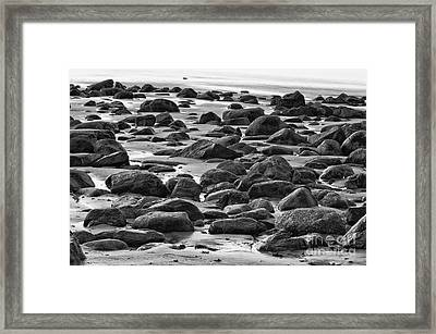 Black And White Wet Rocks Framed Print