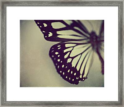 Black And White Wings Framed Print