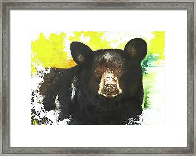 Black Bear Framed Print by Anthony Burks Sr