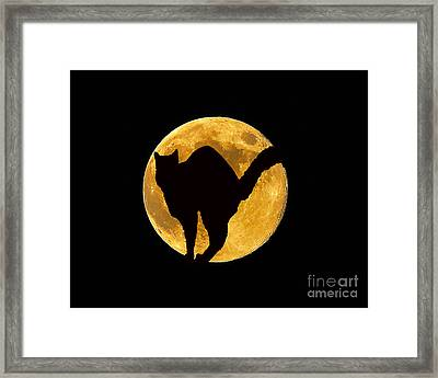 Black Cat Moon Framed Print by Al Powell Photography USA