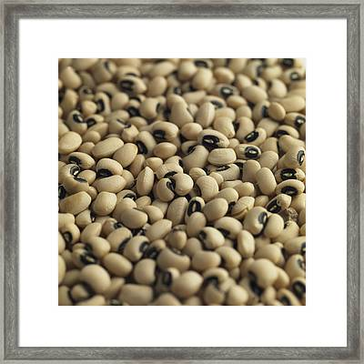 Black Eyed Beans, Natural Food Ingredient Framed Print