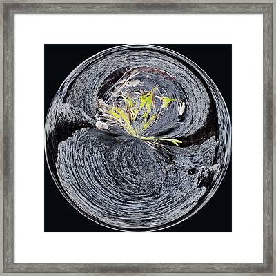 Black Lava Sands Framed Print