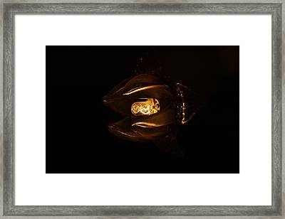 Black Light Framed Print by Tal Richter