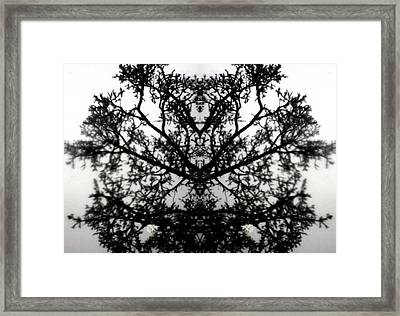 Framed Print featuring the photograph Black Mold by Amy Sorrell