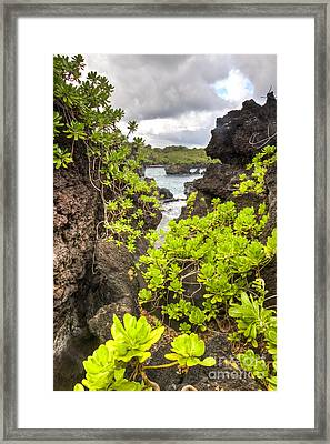 Black Sands Beach Hana Maui Hawaii 2 Framed Print by Dustin K Ryan