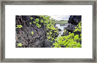 Black Sands Beach Hana Maui Hawaii Framed Print by Dustin K Ryan