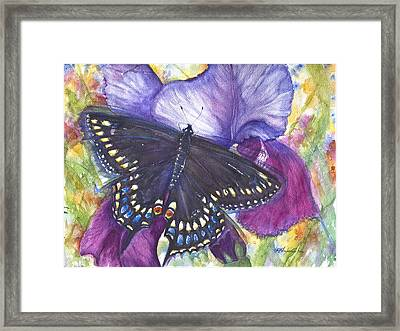 Black Swallowtail Butterfly Framed Print by Patricia Allingham Carlson
