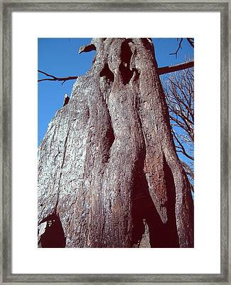 Black Tree Framed Print by Naxart Studio