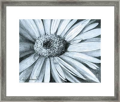 Black White Gerber Framed Print