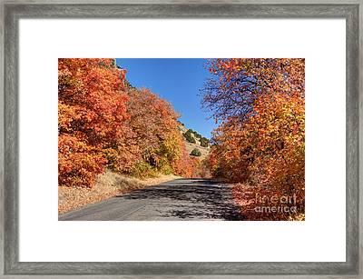 Blacksmith Fork Canyon Autumn Drive - Utah Framed Print by Gary Whitton