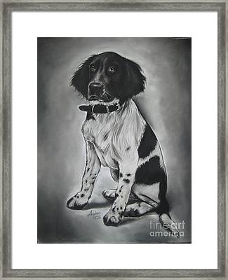 Blacky Framed Print by Anastasis  Anastasi