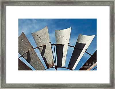 Blades Framed Print by Bob and Nancy Kendrick