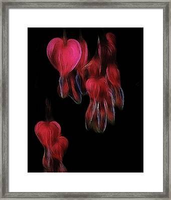 Bleeding Hearts 03 Framed Print by Paul Ward