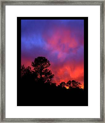 Framed Print featuring the photograph Blessings From The Sun by Susanne Still