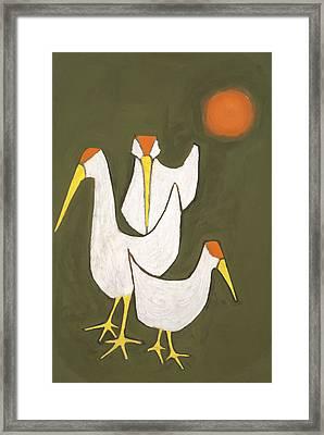 Blind Birds Framed Print
