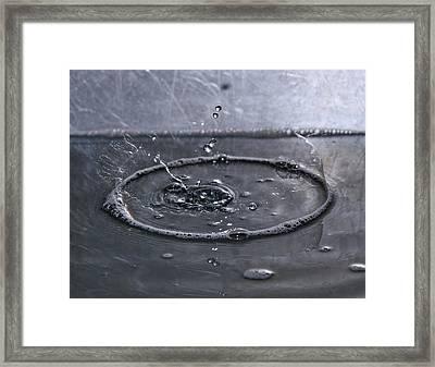 Blink II Framed Print by Betsy Knapp