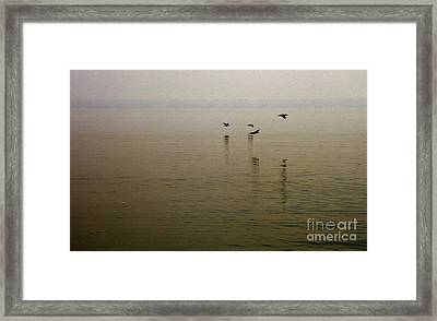 Framed Print featuring the photograph Bliss by Clayton Bruster