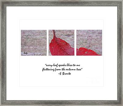 Bliss Framed Print by Traci Cottingham