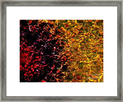 Blood In The Water Framed Print by Silvie Kendall