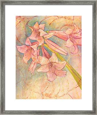Blooming Above Framed Print by Sara Bell