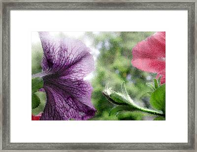 Blooming Flowers Framed Print