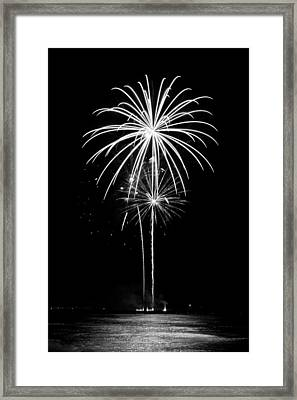 Blooming In Black And White Framed Print by Bill Pevlor
