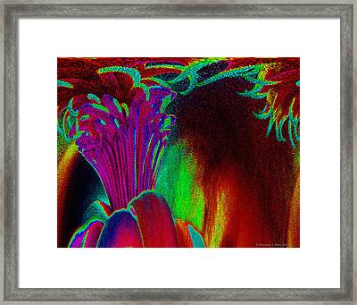 Blooming In The Dark Framed Print